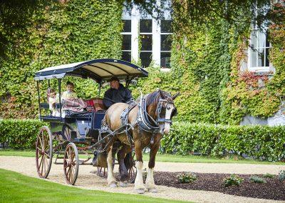 Jaunting Car through the Gardens